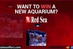MarineDepot Red Sea Max Nano Aquarium Giveaway