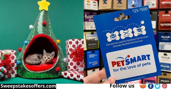 PetSmart Holiday Pet Hut Sweepstakes