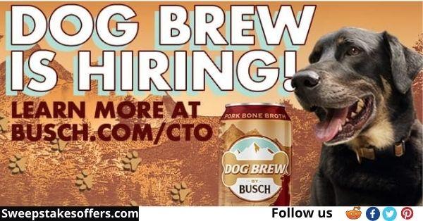 Busch Dog Brew Contest