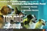 A&E America's Top Dog Sweepstakes