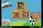 Ben & Jerry's Doggie Desserts Wall of Waggs Contest