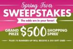 Dollar Tree Engage Spring Fever Sweepstakes
