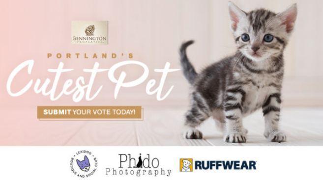 K103 Portland's Cutest Pet Contest