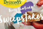 Driscoll's Berry Sweepstakes: Win Visa Gift Cards
