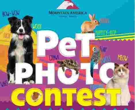 Mountain America Credit Union Pet Photo Contest