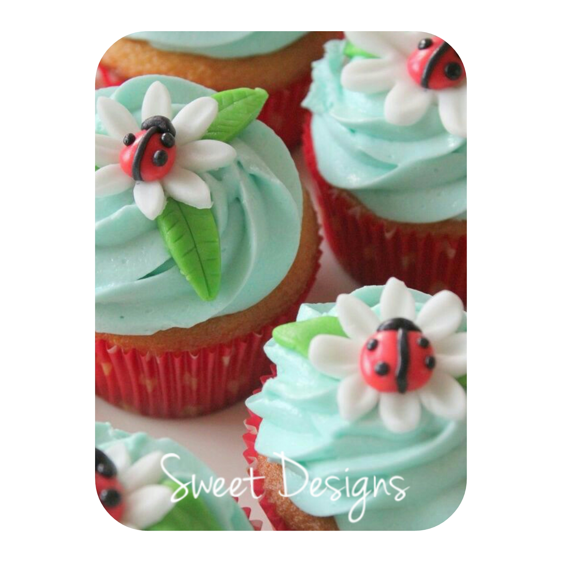 Buttercream Cupcakes with fondant flowers, leaves and lady bugs