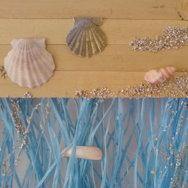 shells & sand