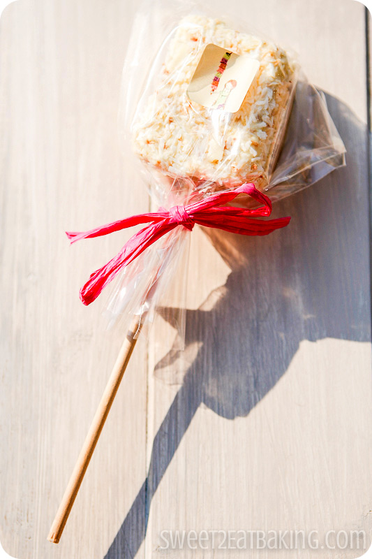 Vanilla bean, white Belgian chocolate and toasted coconut marshmallow lollipop - Foodie PenPals July 2012
