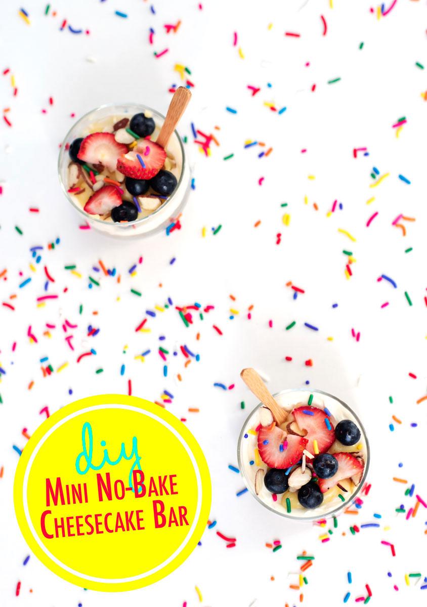 Mini No Bake Cheesecake Bar