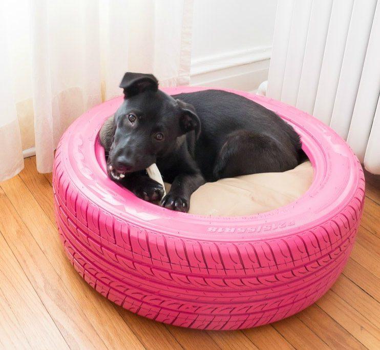 Cucce Per Cani Ecco 10 Idee Fai Da Te Molto Originali