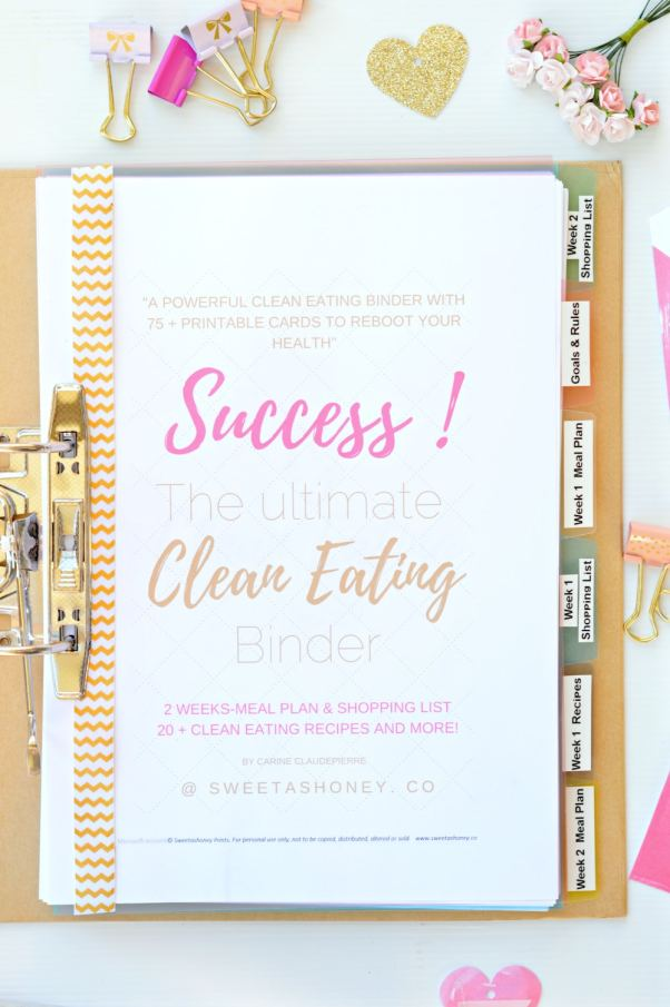 success the ultimate clean eating binder