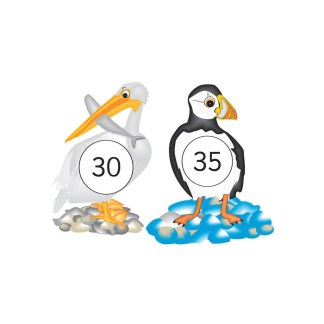 Puffins and Pelicans Number Facts (Downloand only)