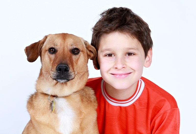anti social dog breeds