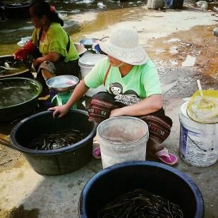 Market of Muang Sing