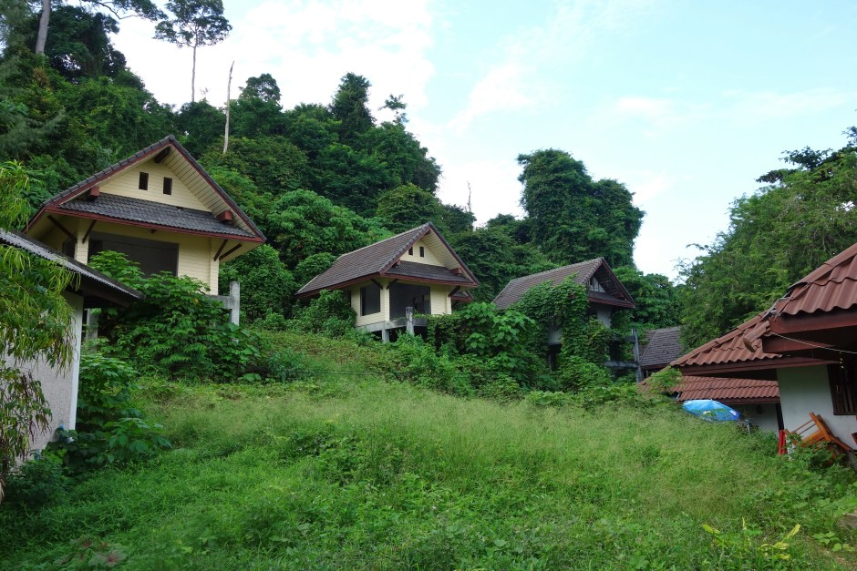 Unfinished bungalows, slowly taken over by the jungle