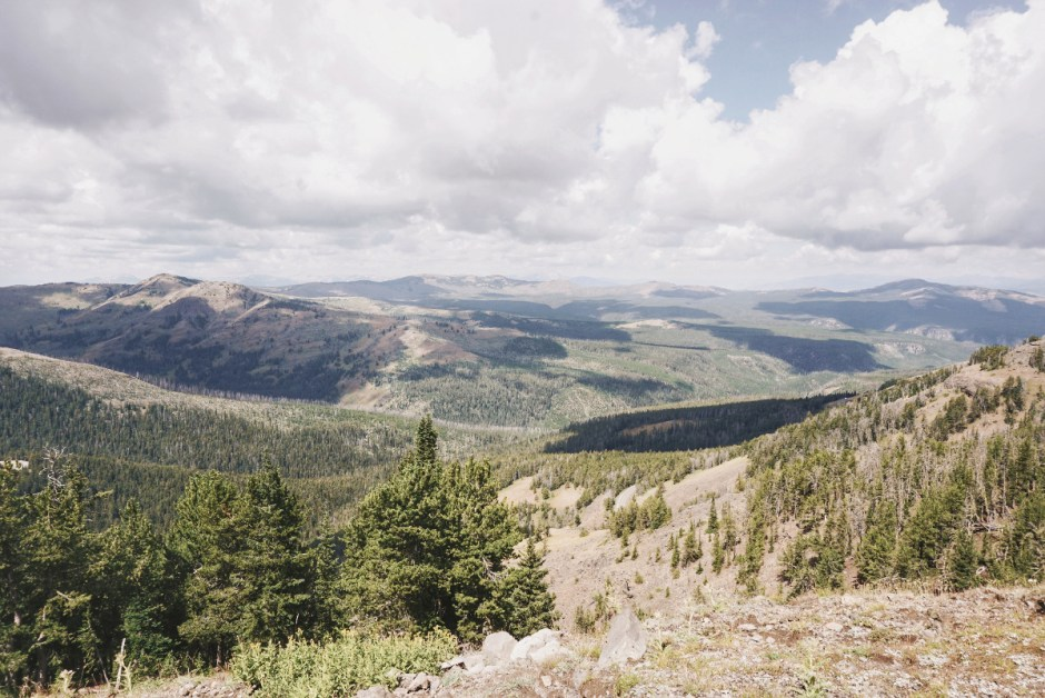 How To Get Around Yellowstone Without A Car