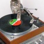 yung DJ qat spinnin' 4 u