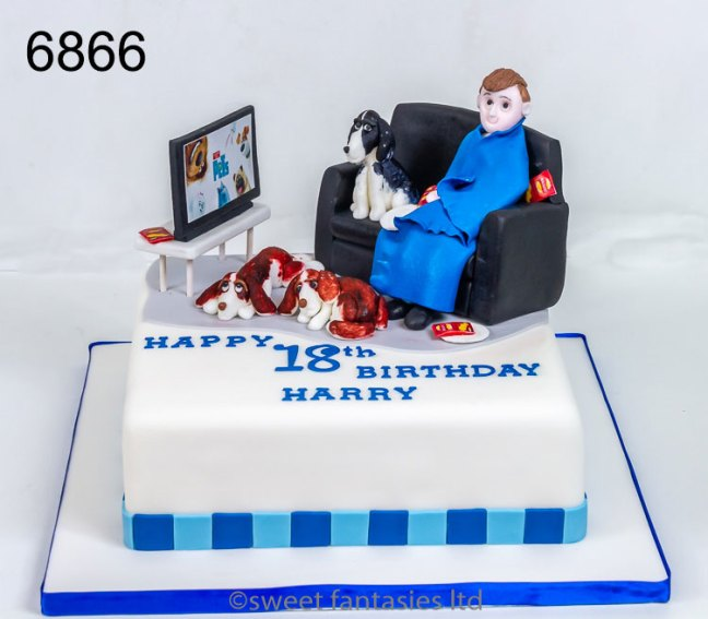 Boy on sofa with dogs watching TV, 18th birthday cake