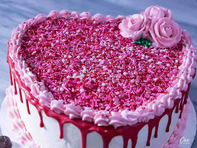heart shaped valentines day cake