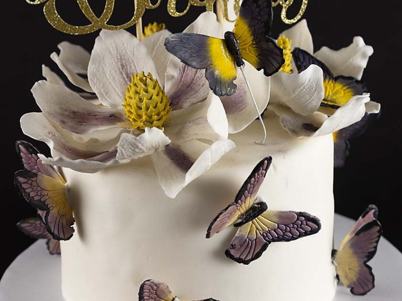 Magnolia Butterfly Cake