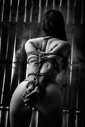 wooden_stocks_bondage_1