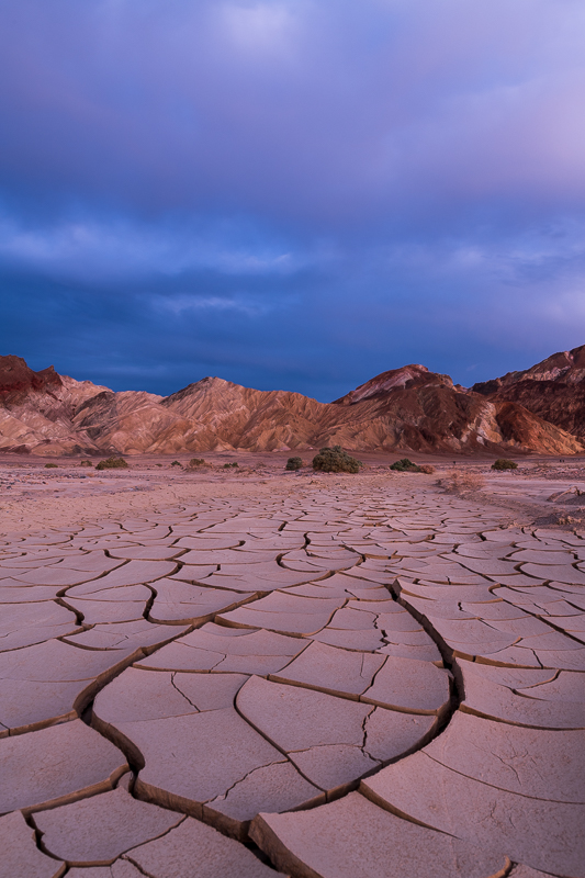 Mud flats during blue hour.