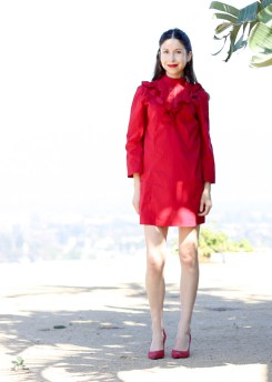 Valentine's Red Dress-27