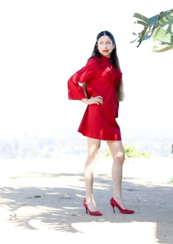 Valentine's Red Dress-31