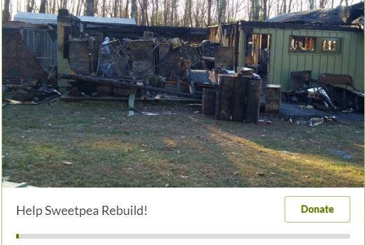 Help Sweetpea Rebuild