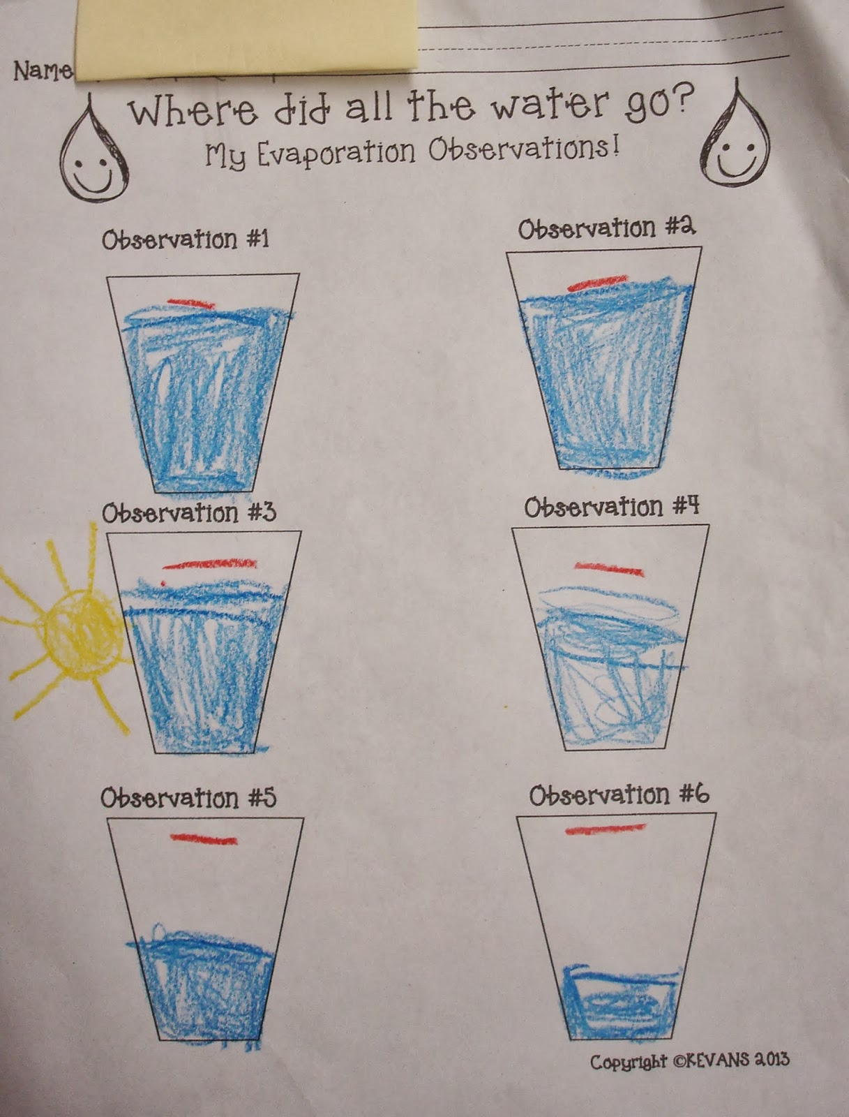 Each Day We Recorded Our Findings On Our Observation Sheet