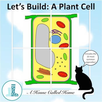 Let's Build: A Plant Cell