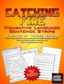 Catching Fire Free Figurative Language Sentence Strips