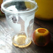 Don't let these annoying pests get the best of you -- get rid of them with their fast-acting fruit flies apple trap.