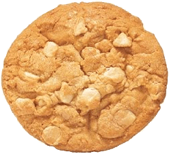 Enjoy a Cup of Flyin Hawaiian Kona Style Coffee With These Macadamia Nut White Chocolate Cookies (Subway Copycat Recipe)