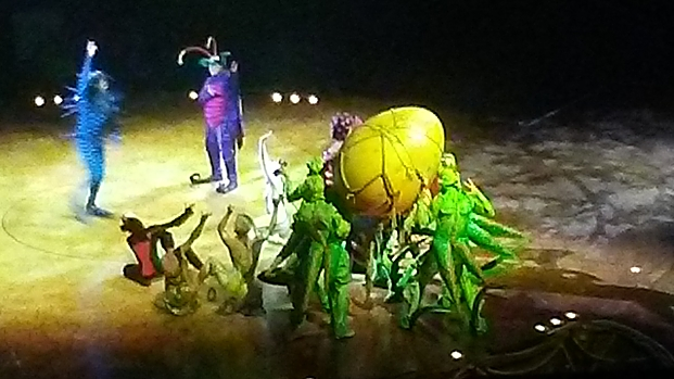 Want Be Amazed and Entertained? Go See OVO by Cirque du Soleil!!!!