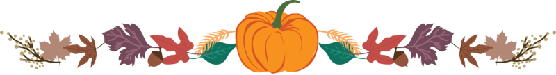 Fall-Divider-for-Best-Pumpkin-Pie-Recipe-Post-800x108-1.png?resize=800%2C108&ssl=1&profile=RESIZE_710x
