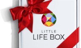 Little Life Box Holiday Gift Guide Giveaway! Ends 12/24