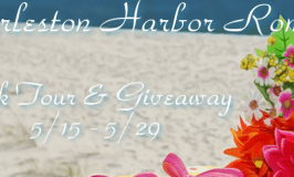 Charleston Harbor Romances Book Tour & $25 Amazon Giveaway 5/15 – 5/29