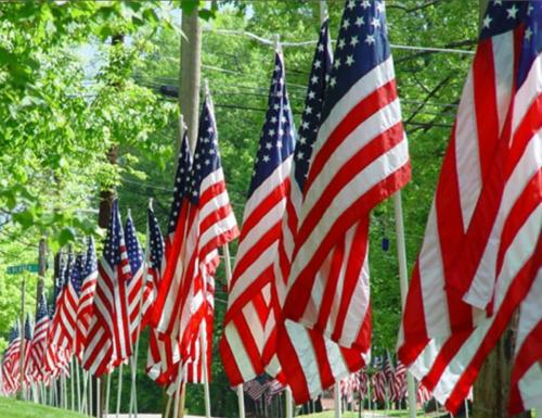 Memorial Day American Flags