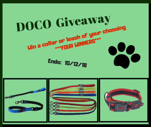 Four lucky winners receive ANY DOCO Pet Leash or Collar of their choosing when this DOCO Pet Giveaway ends 10/12. ARV: $11-$36 #Win #Winit #Winning #Sweeps #Sweepstake #Sweepstakes #Contest #ContestAlert #Competition #Giveaway #GiveawayAlert #Prize #Free #Gift