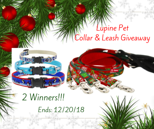 Enter for a chance to be 1 of 2 lucky winners who will win a Lupine Pet Collar & Leash when this Giveaway ends 12/20. #Win #Giveaway #GiveawayAlert #Prize #Free #Gift #Holiday #SMGN #GiftGuide