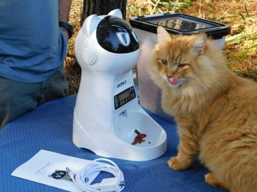 WOPET AUTOMATIC PET FEEDER - NO MORE GETTING UP AT 4 AM!!!! The WOPET Automatic Cat Pet Food Dispenser for Cats and Dogs Works! #Pet #Cat #Dog #Kitten #Puppy #Robot #Automatic #Digital #Program #AutomaticFeeder #PetFeeder