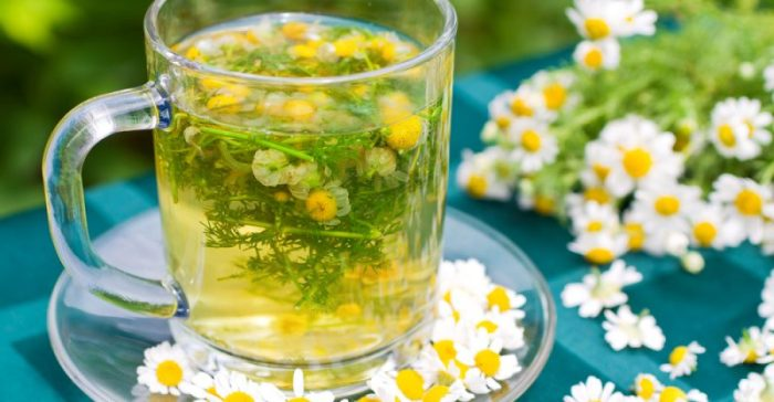 Teas For Digestion - Ease Your Stomach With These Teas - Chamomile Tea