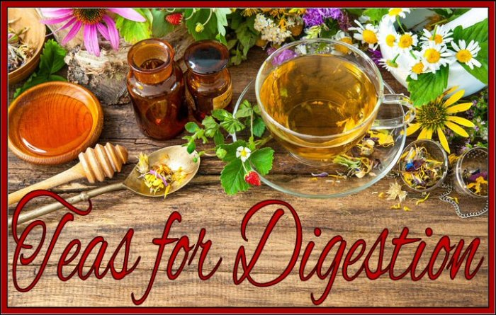 The Best Teas For Digestion - Ease Your Stomach With These Teas #Tea #TeasforDigestion #Digestion #Health #Natural #NaturalRemedy #Calming #Soothing #Relaxation #PainRelief Are you feeling bloated? Having stomach pains? Some teas are particularly soothing and healing for the digestive system. Sometimes black, green, and herbal teas can be a simple, natural solution that is gentle for your system and easy to incorporate in your daily routine. Plus a warm cup of tea not only soothes your stomach, it also gives you an overall feeling of wellbeing. https://www.sweetsouthernsavings.com/tea-for-digestion-ease-your-stomach-with-these-teas/
