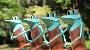 """A """"Ribbiting"""" Exhibit at Airlie Gardens"""