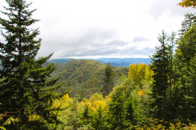 View of the Great Smoky Mountains from Newfound Gap.