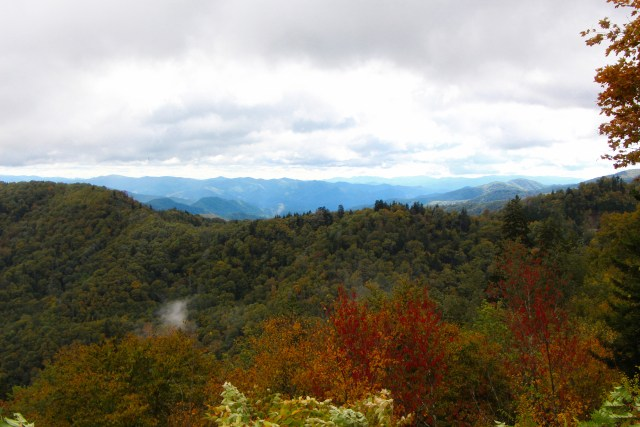 Early fall colors and blue mountains of the Great Smoky Mountains.