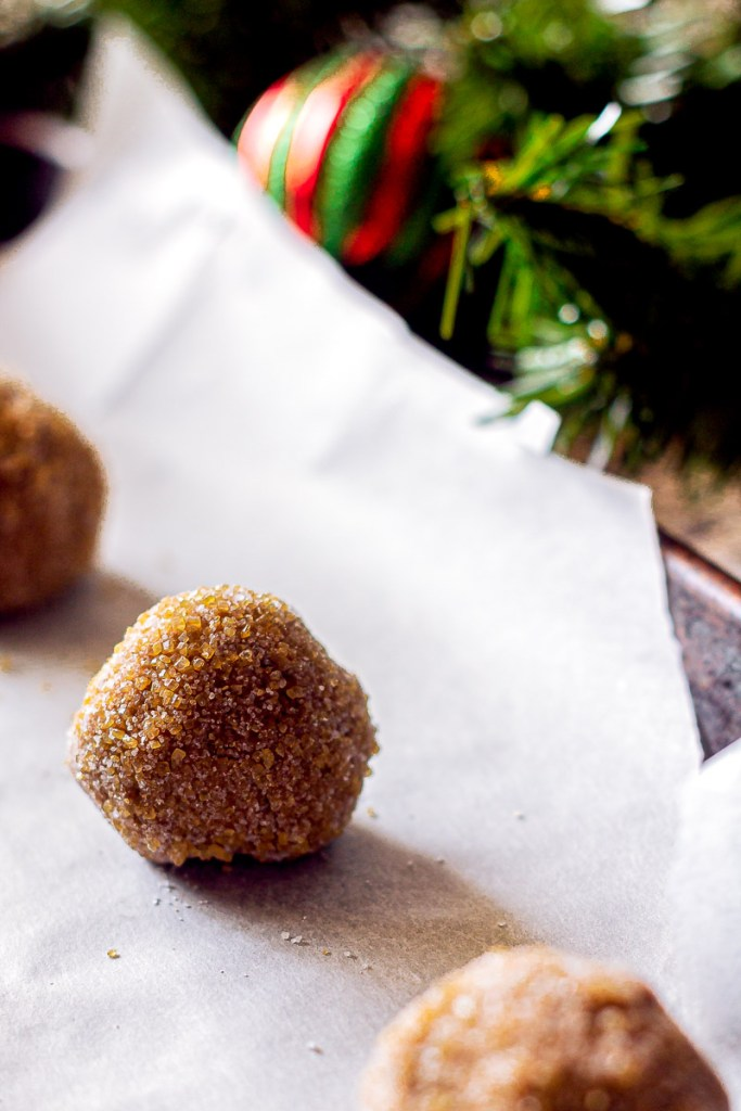 a raw ball of gingersnap dough coated in sugar backlit on a baking sheet