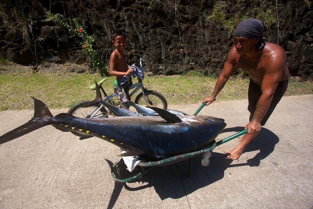Local with his big eye tuna catch.