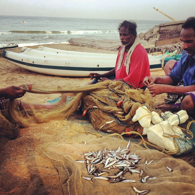 The local catches in Varkala were frighteningly insignificant. Most fishermen I spoke with said catches had been even lower than the last few years.